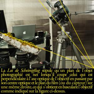 atelier-photo-scheimpflug1